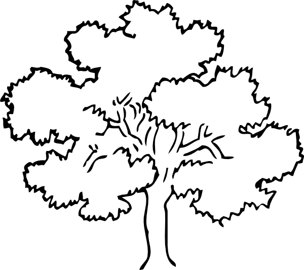 autumn coloring pages 2 - Coloring Page Tree 2