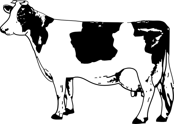 cow coloring pages 3 - Cow Coloring Page