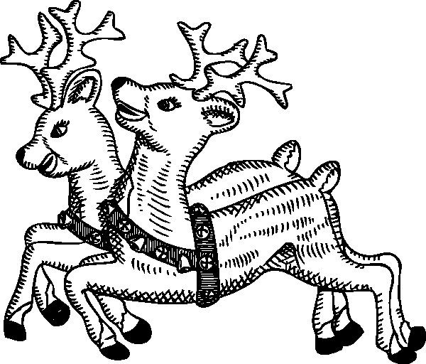 Deer Coloring Pages Png Pictures