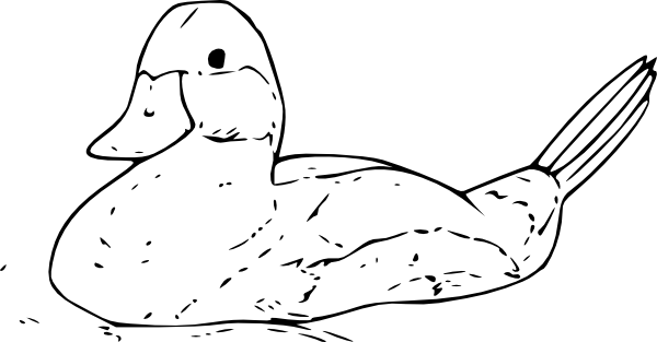 duck coloring pages 5