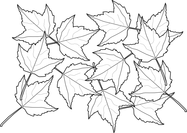 fall coloring pages 2 coloring pages to print