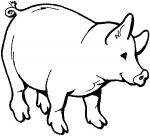 pig farm coloring pages