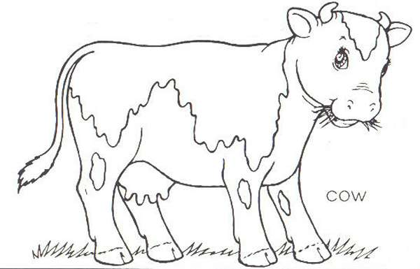cow farm coloring pages - Farm Coloring Pages