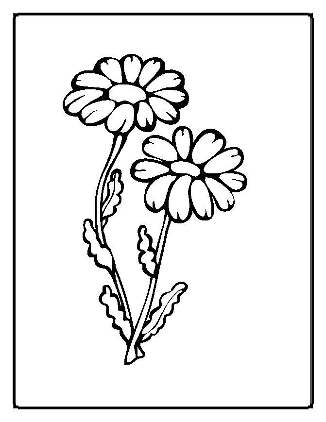 Flower Coloring Pages 2 Coloring Pages To Print Pictures Of Flowers Coloring Pages