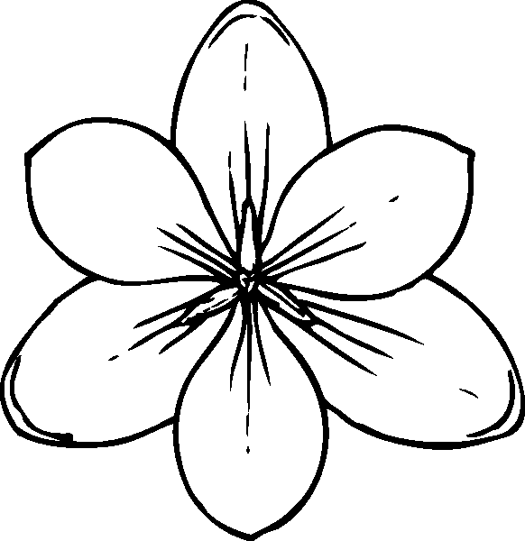 coloring pages of a flower - photo#7