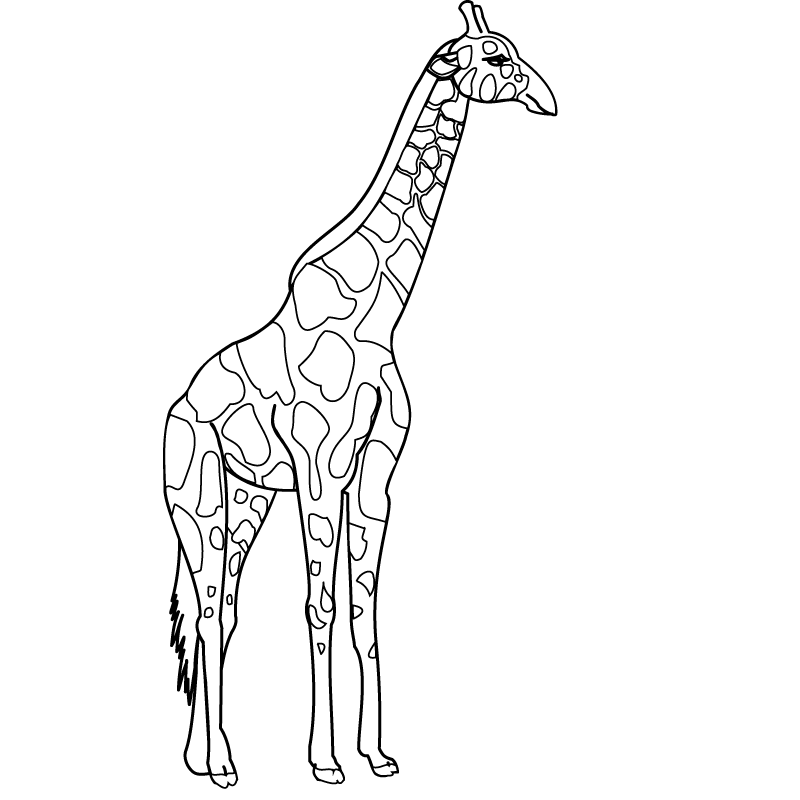 Giraffe Coloring Pages 3