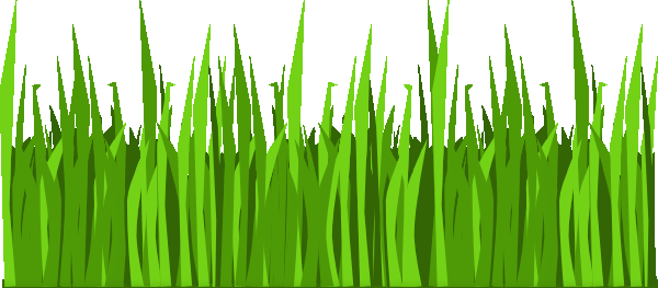Field Of Grass Coloring Page