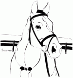 horse coloring pages 3
