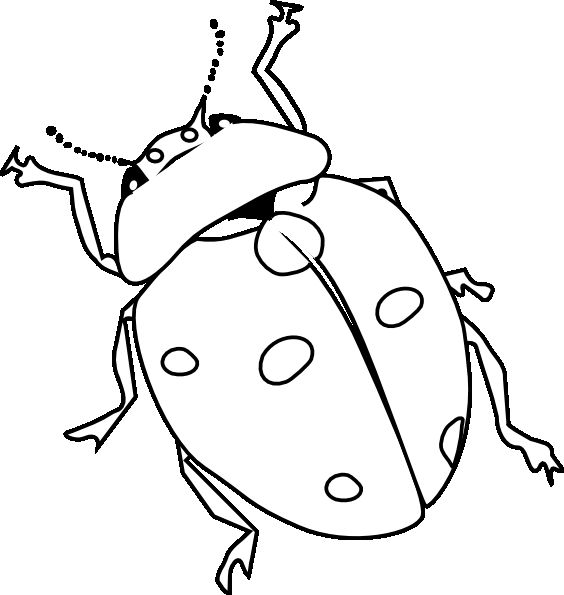 Cute ladybugs coloring pages