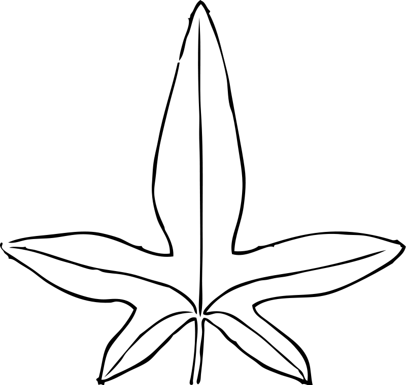 Leaf Coloring Pages 2 Coloring Pages To Print Leaf Coloring Page