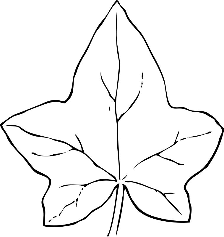leaf coloring pages children-#34