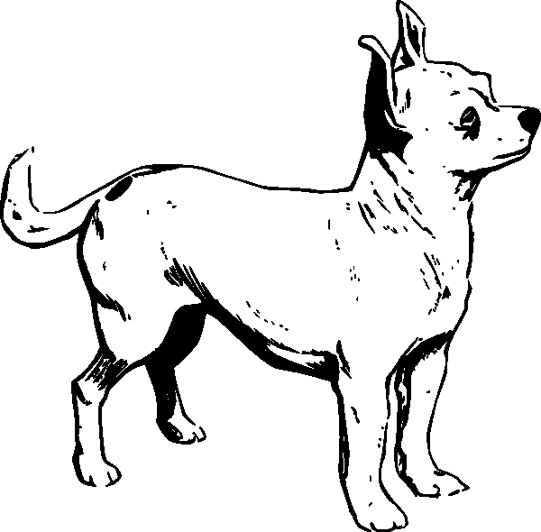 Rider and thepups free colouring pages for Little puppy coloring pages