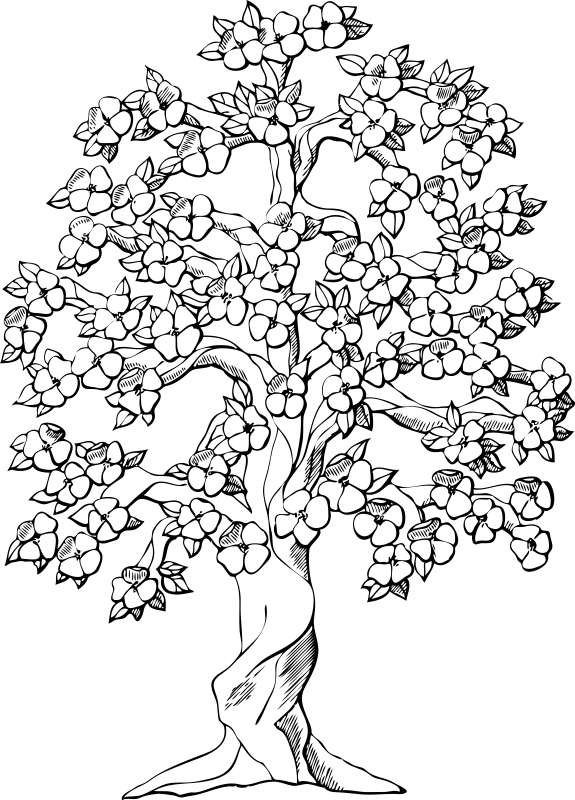 tree coloring pages 2