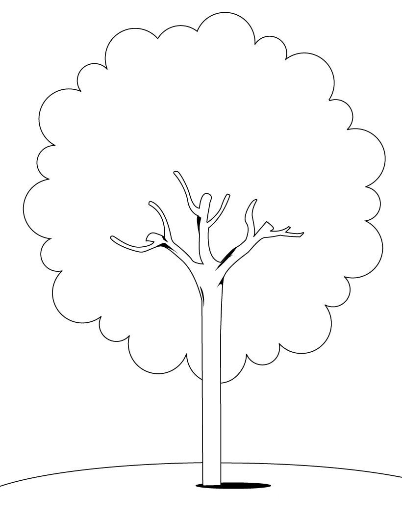 Tree Coloring Pages Coloring Pages To Print Colouring Pages Tree