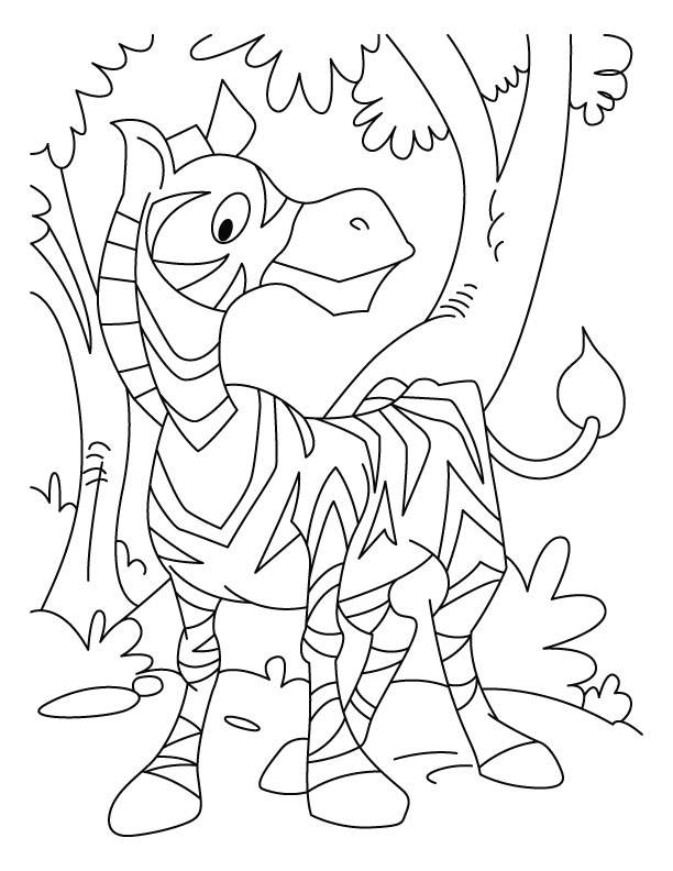 zebra coloring pages 3 - Zebra Coloring Pages