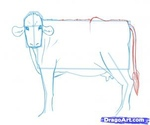 how to draw a cow 10