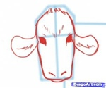 how to draw a cow 7