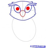 how to draw an owl 4