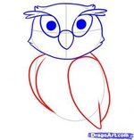 how to draw an owl 5