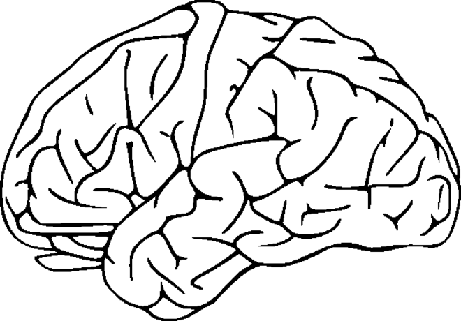 It's just a picture of Fabulous brain coloring pages