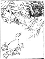 duck coloring pages 2