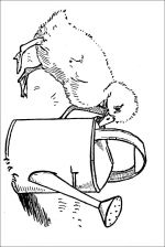 duck coloring pages 3