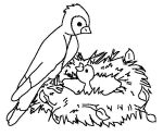 birds farm coloring pages