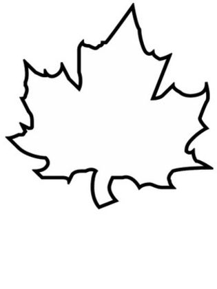 Leaf Coloring Pages 3 | Coloring Pages To Print