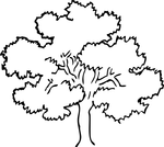 tree coloring pages 3